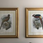 Framed Large Prints